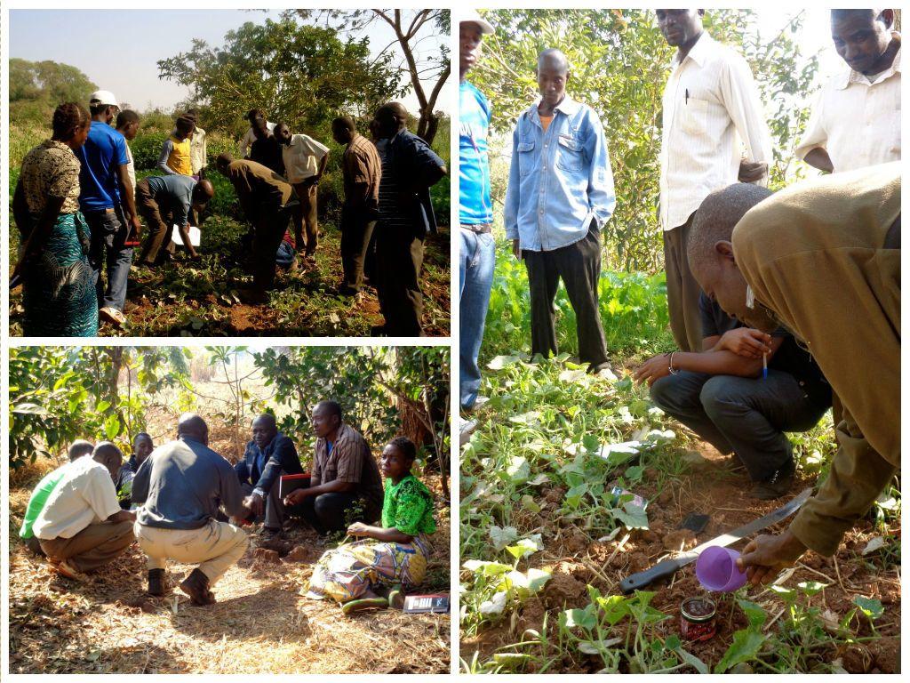 Soil science education kicks off in khundi kusamala for About soil science
