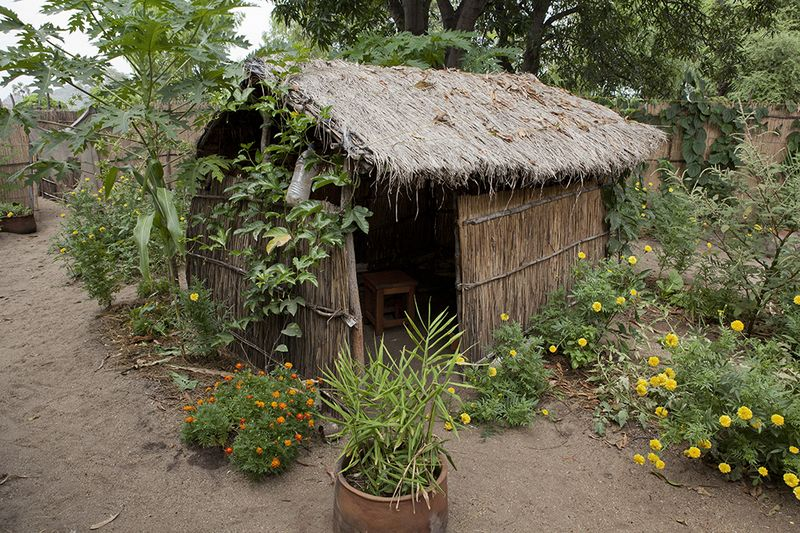 Kasankha home garden